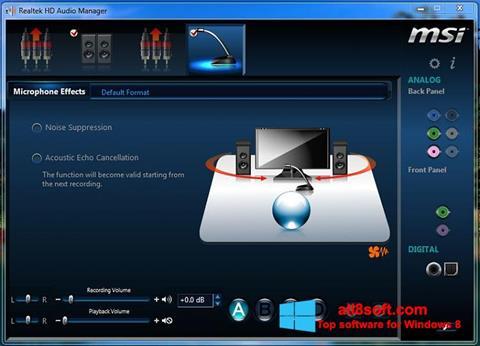 Skærmbillede Realtek Audio Driver Windows 8