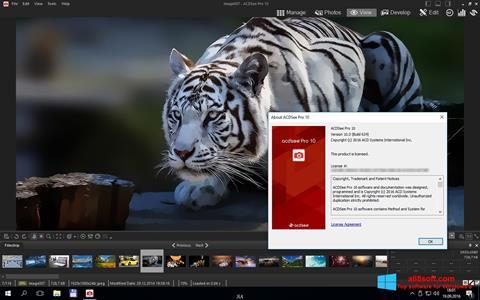 Skærmbillede ACDSee Pro Windows 8