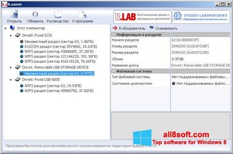 Skærmbillede R.saver Windows 8