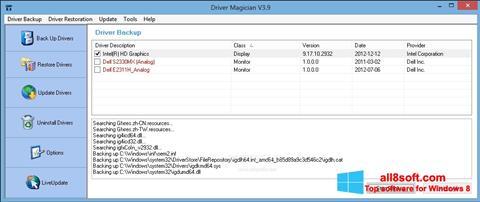 Skærmbillede Driver Magician Windows 8