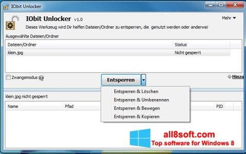 Skærmbillede IObit Unlocker Windows 8