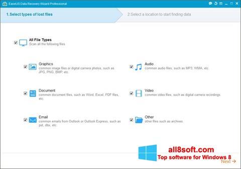 Skærmbillede EaseUS Data Recovery Wizard Windows 8