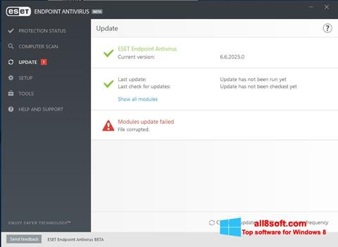 Skærmbillede ESET Endpoint Antivirus Windows 8