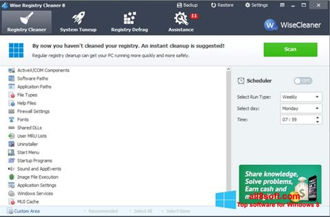 Skærmbillede Wise Registry Cleaner Windows 8