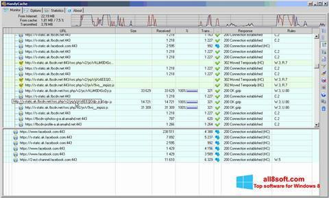 Skærmbillede HandyCache Windows 8