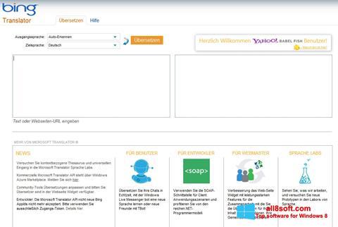Skærmbillede Bing Translator Windows 8