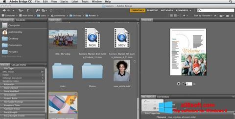 Skærmbillede Adobe Bridge Windows 8
