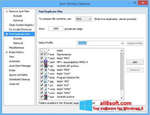 Skærmbillede Ace Utilities Windows 8