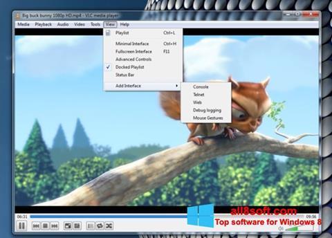 Skærmbillede VLC Media Player Windows 8