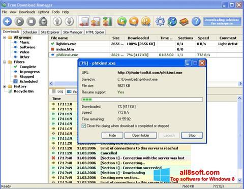 Skærmbillede Download Master Windows 8